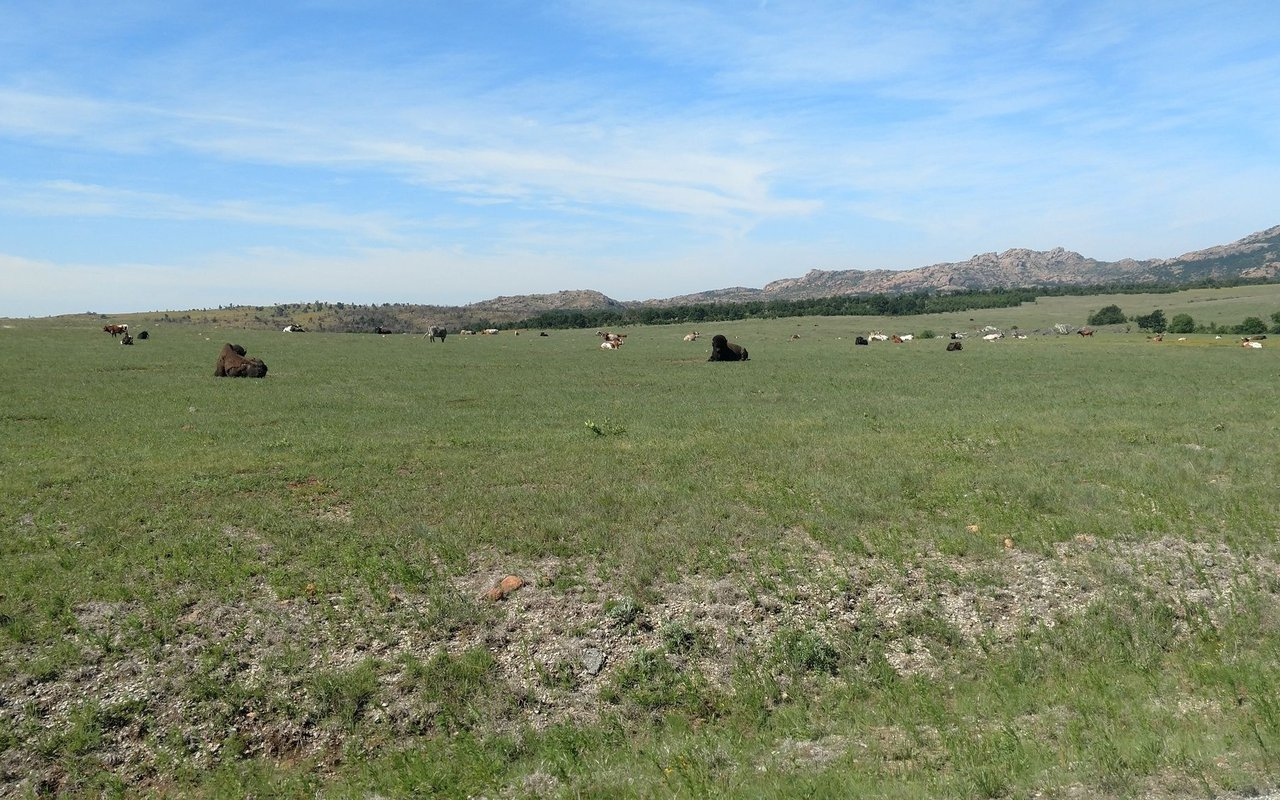 AWAYN IMAGE Elk Mountain Trail