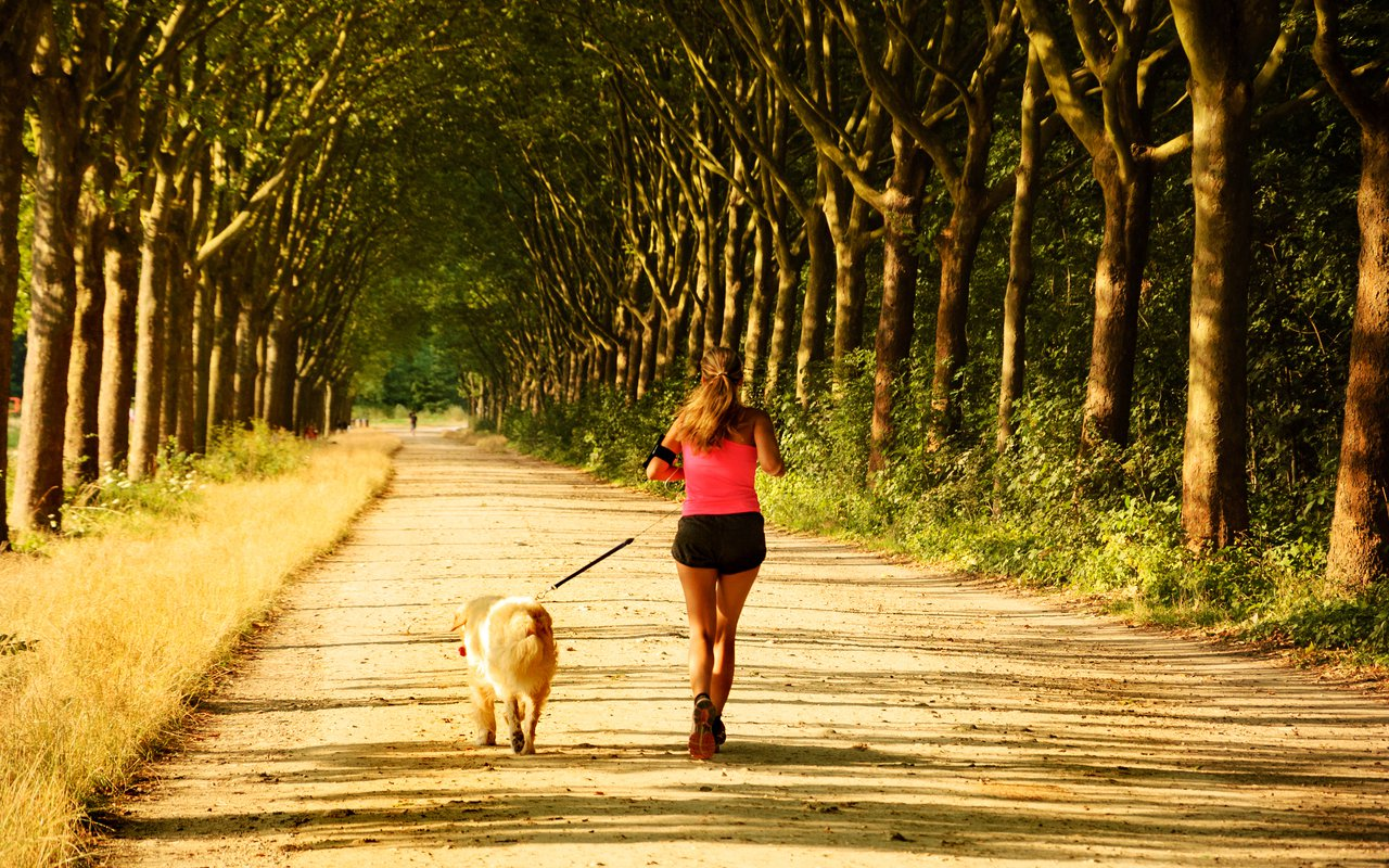 AWAYN IMAGE Run a long mile in Bois de Vincennes