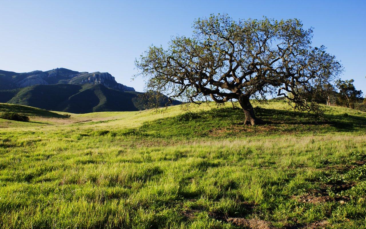 AWAYN IMAGE boney mountain in point mugu state park