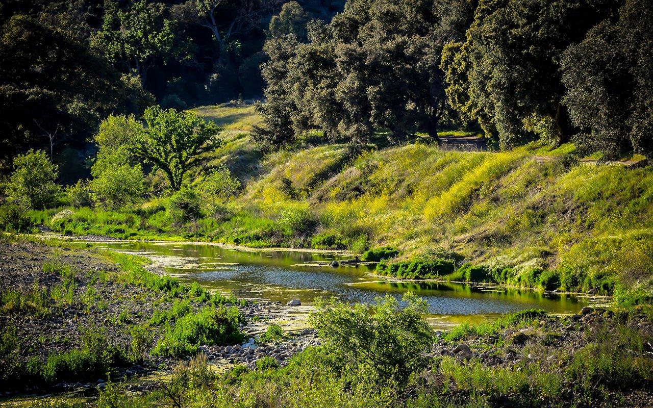 AWAYN IMAGE Hike Malibu Creek State Park