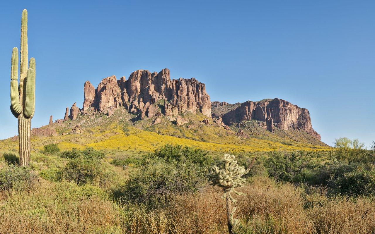 AWAYN IMAGE Hike to Sonoran Desert National Monument