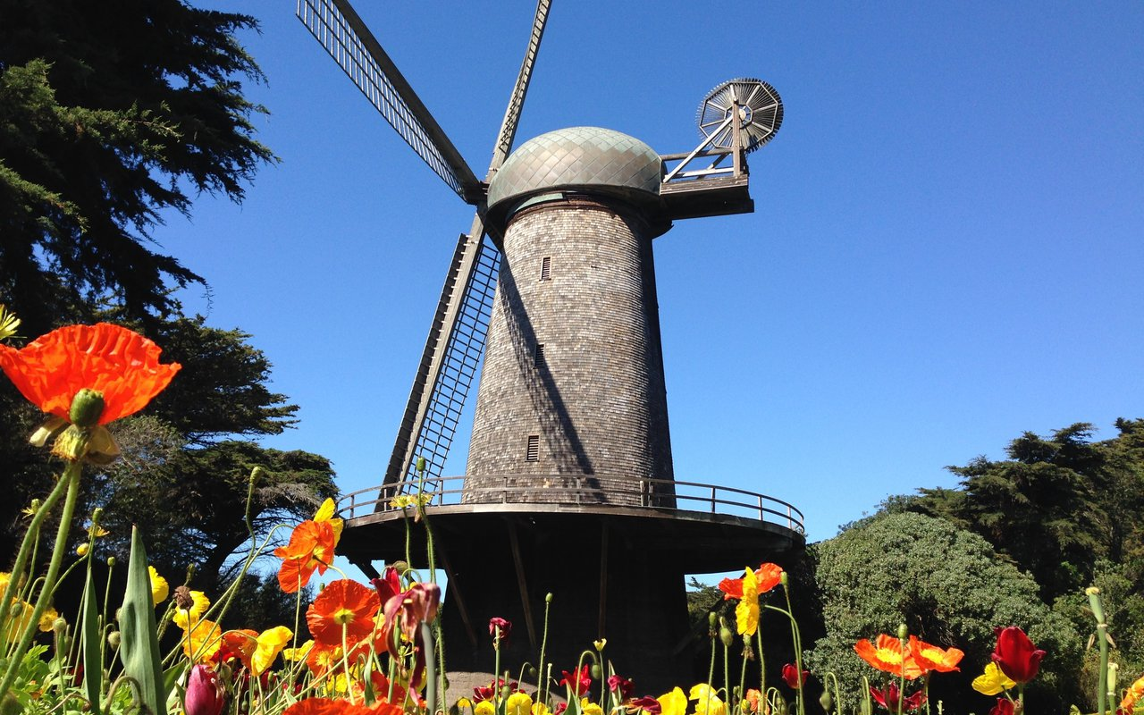 AWAYN IMAGE Dutch Windmill