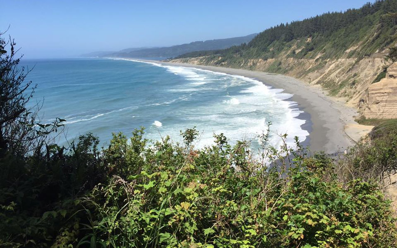 AWAYN IMAGE Relaxing hike to Patrick's Point State Park