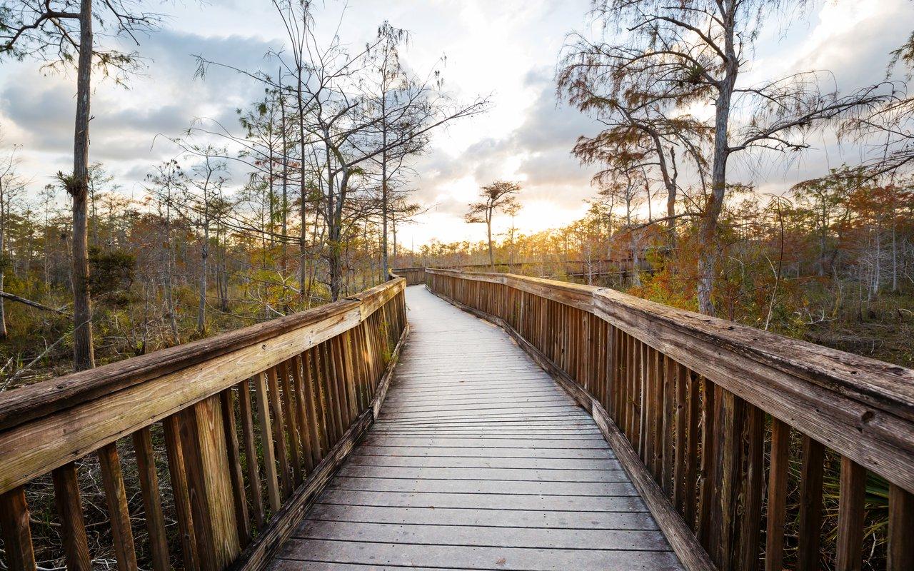 AWAYN IMAGE Everglades National Park