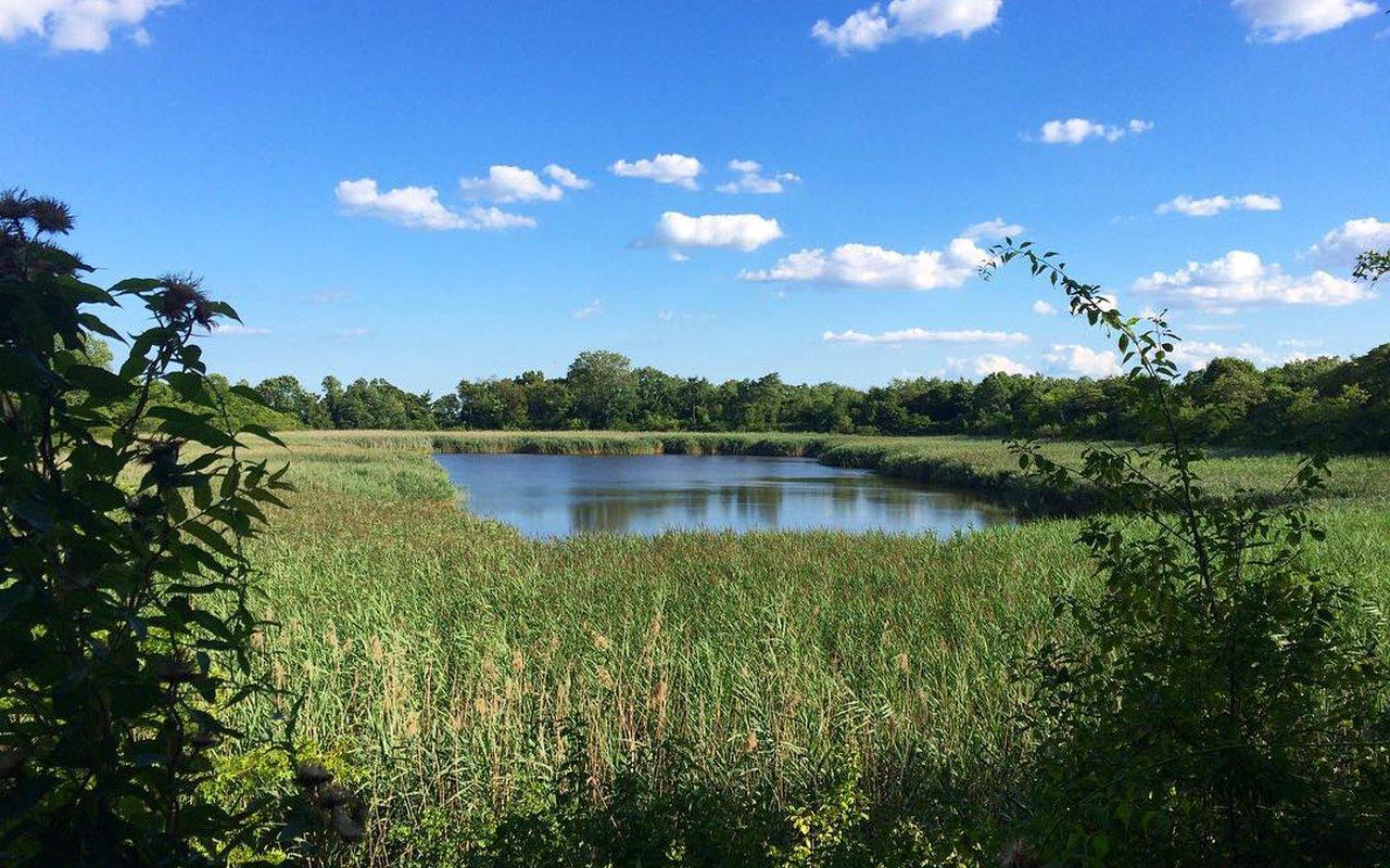 AWAYN IMAGE Walk/ Run Ridgewood Reservoir