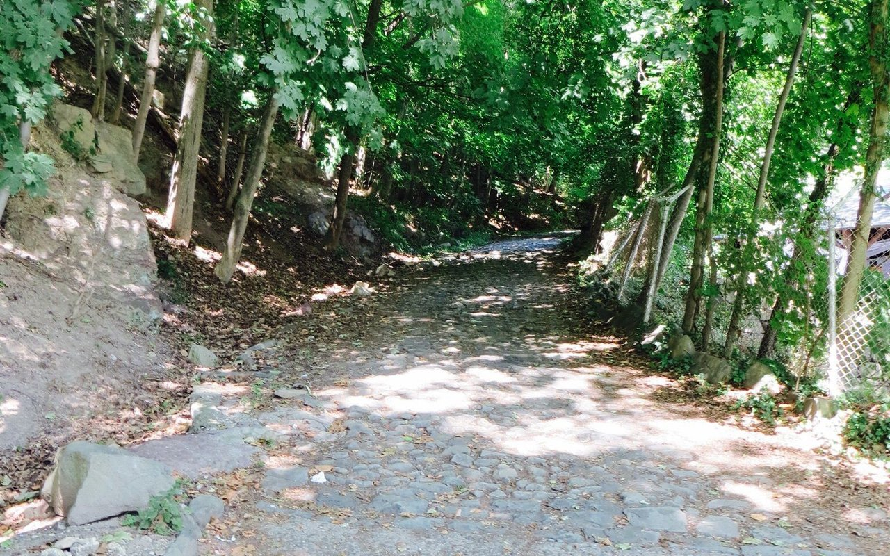 AWAYN IMAGE Walk/ Run Shore Trail