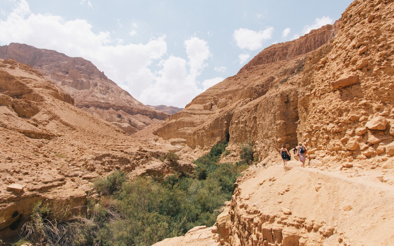 AWAYN IMAGE Hike to En Gedi Nature Reserve