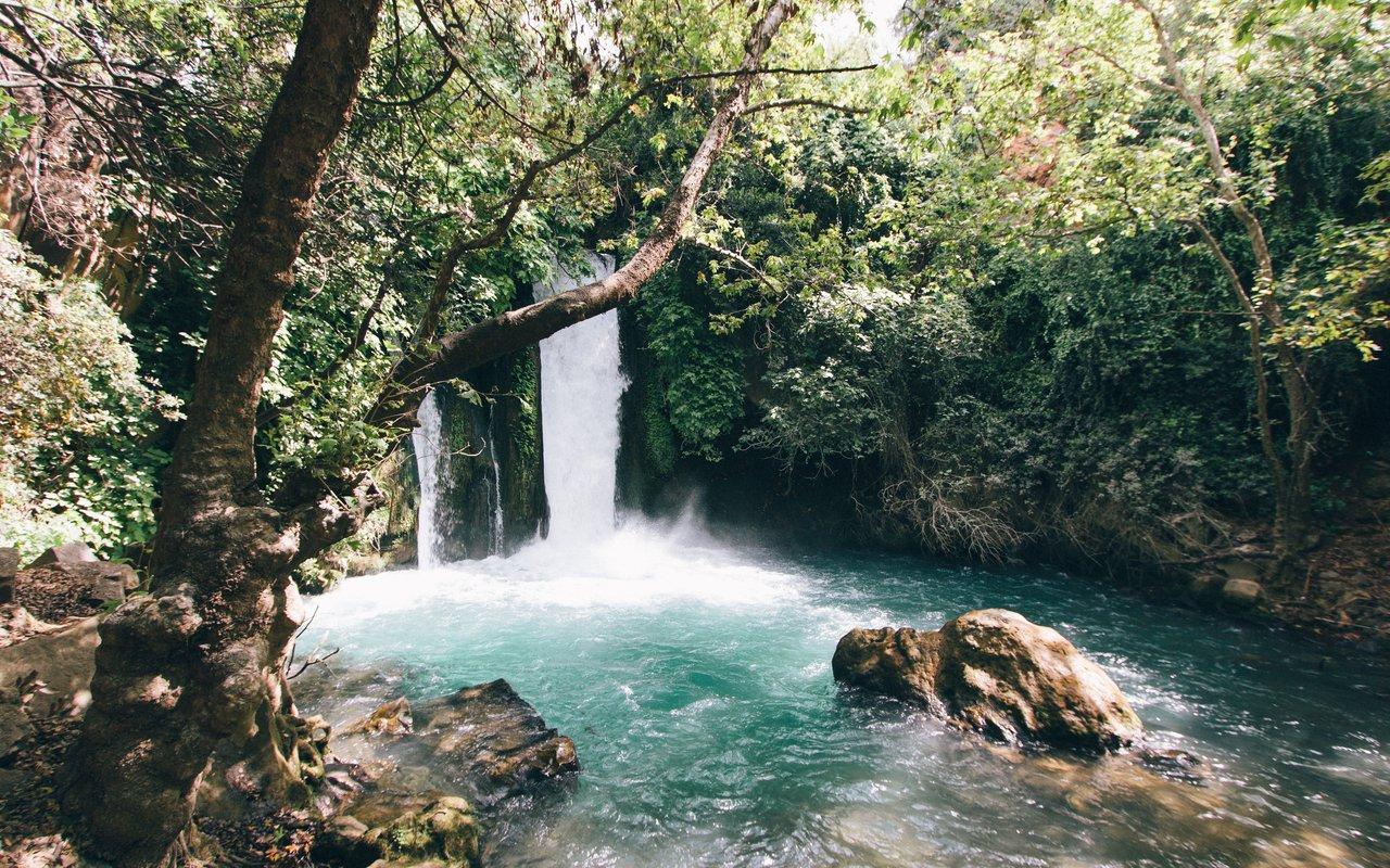 AWAYN IMAGE Hike to En Gedi Nature Reserve