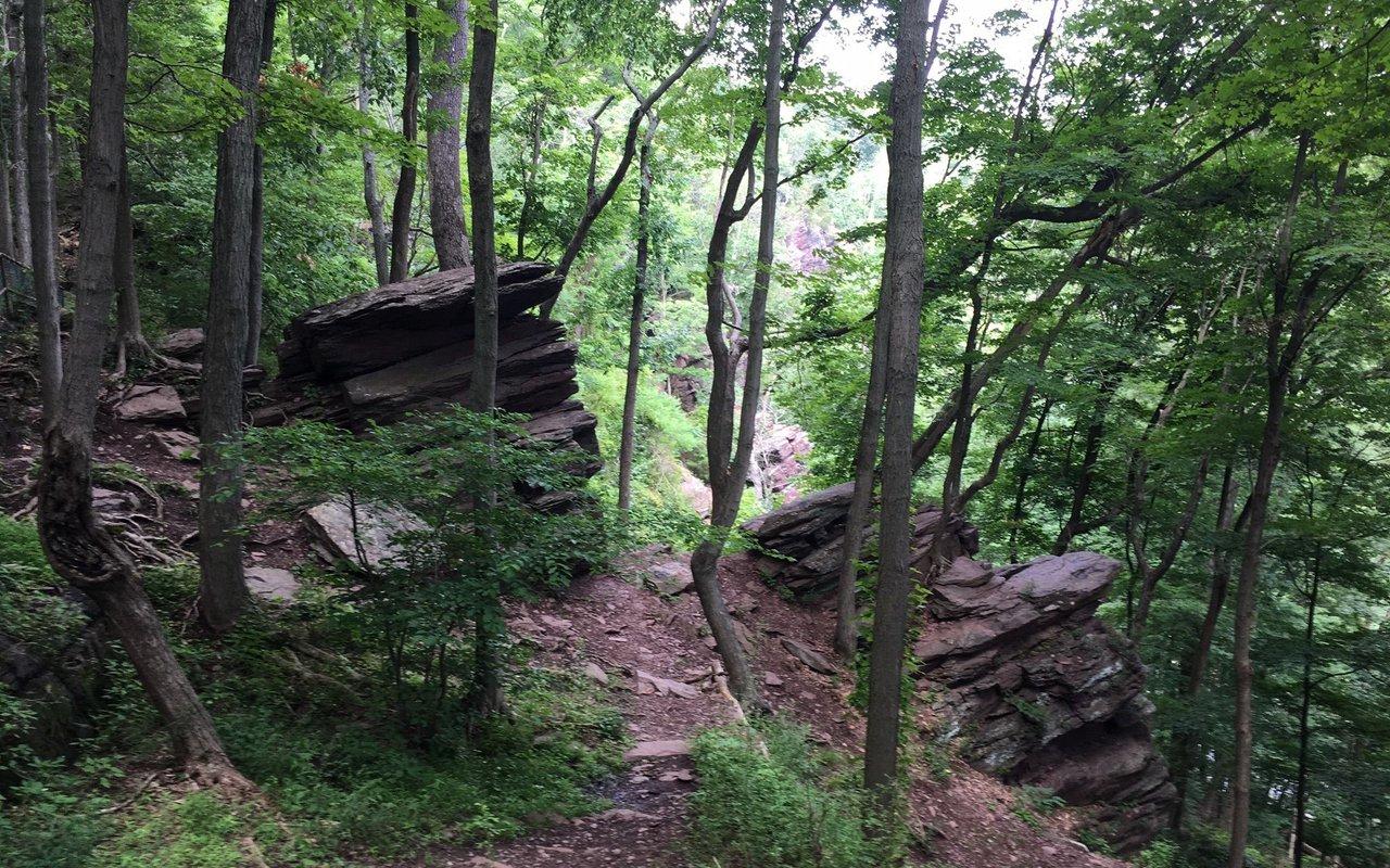 AWAYN IMAGE High Rocks Nature Preserve