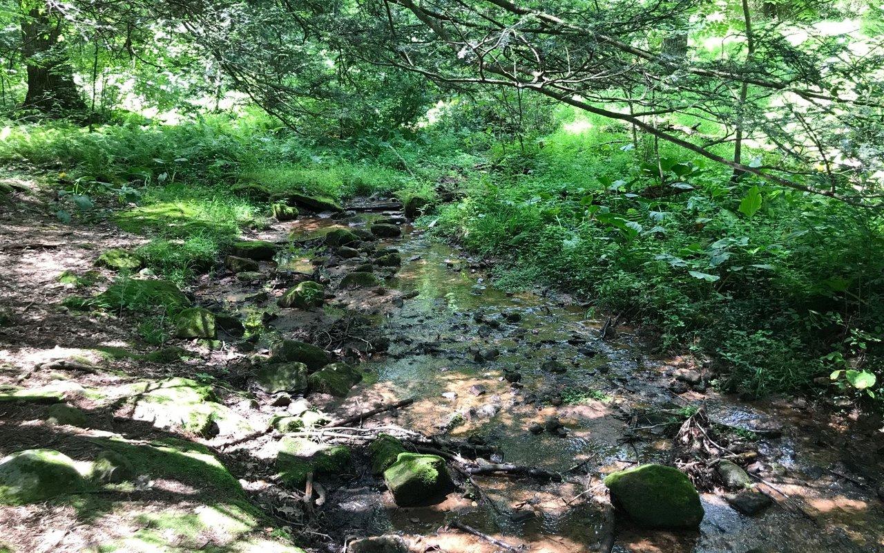 AWAYN IMAGE Boone Trail