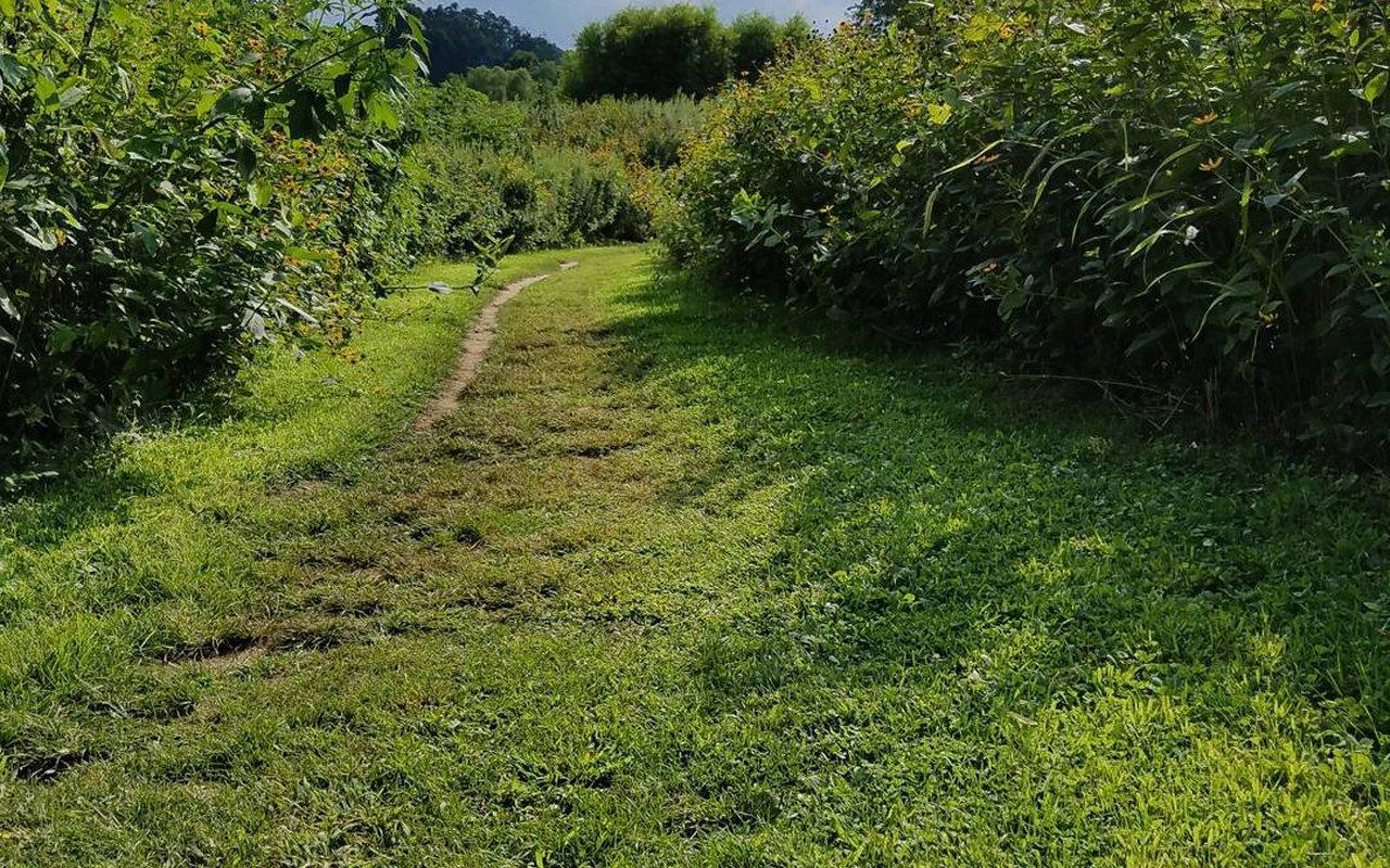 AWAYN IMAGE Stroud Preserve Red Trail