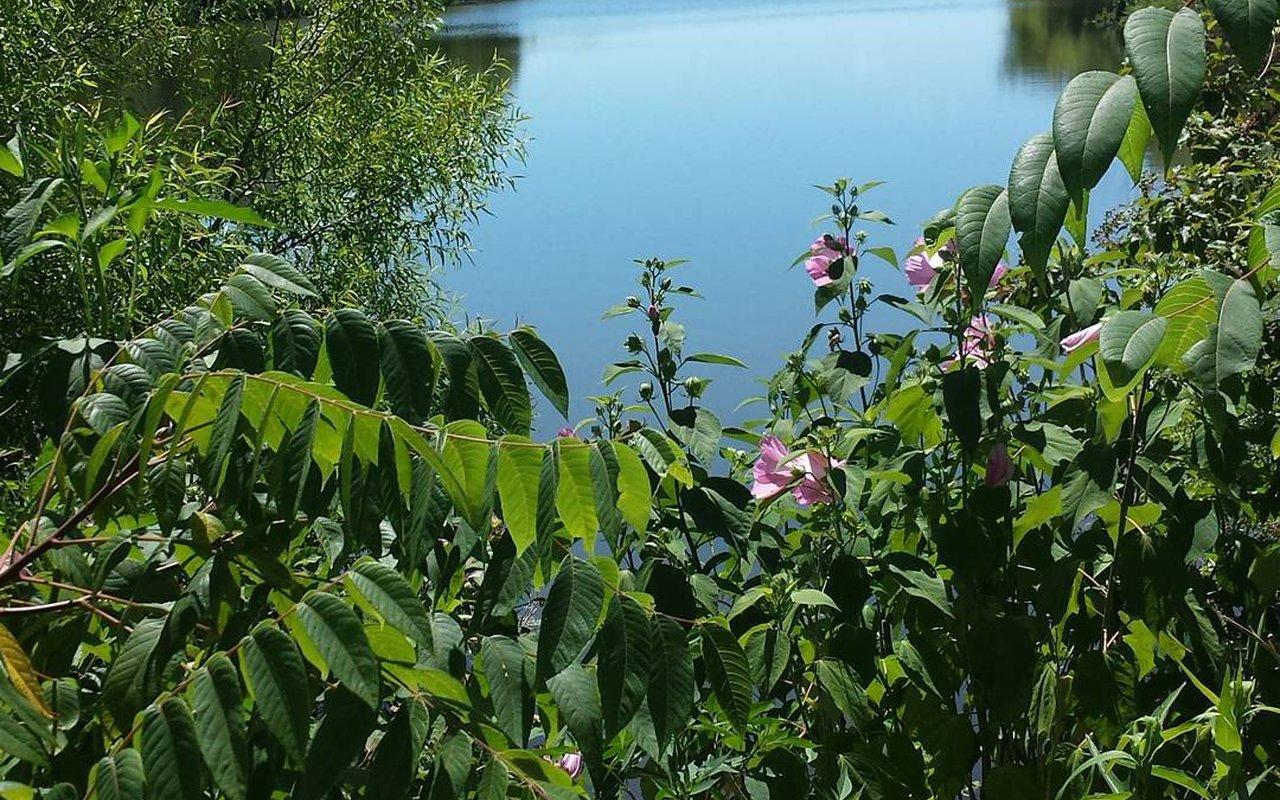AWAYN IMAGE Lake Galena Hike and Bike Trail