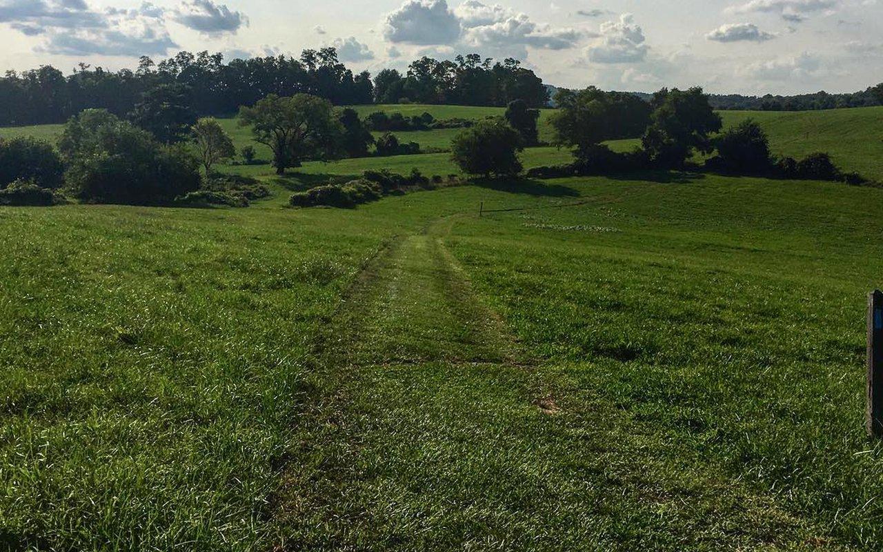 AWAYN IMAGE Mason-Dixon Trail