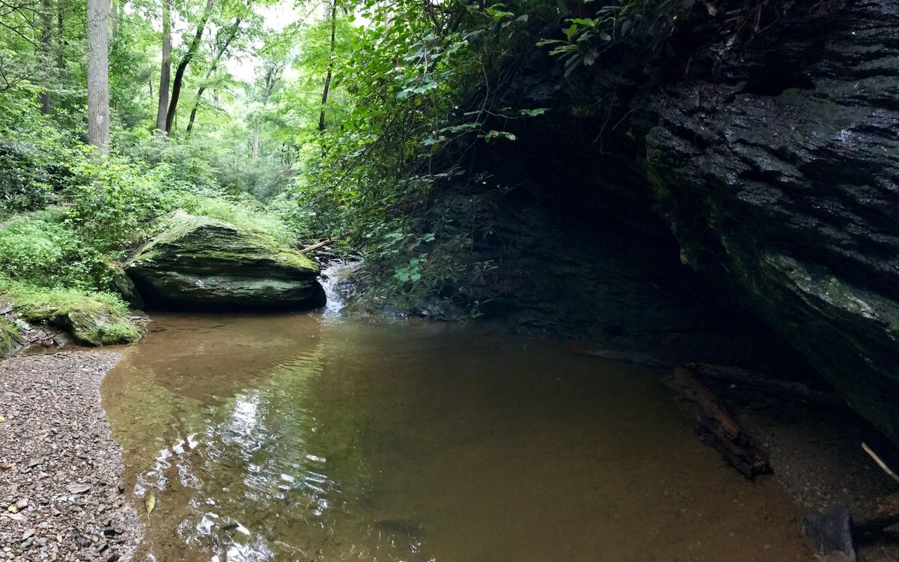 AWAYN IMAGE Kellys Run Pinnacle Trails