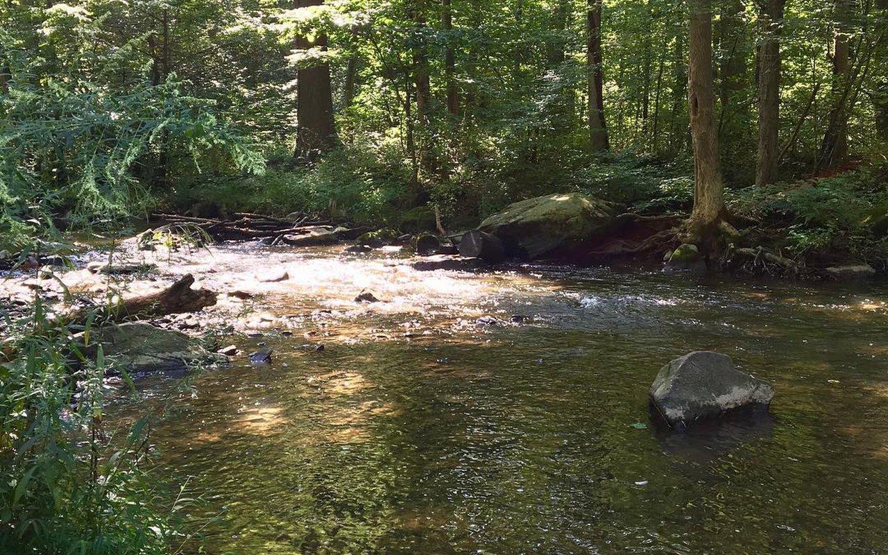 AWAYN IMAGE Hibernia County Park Trail