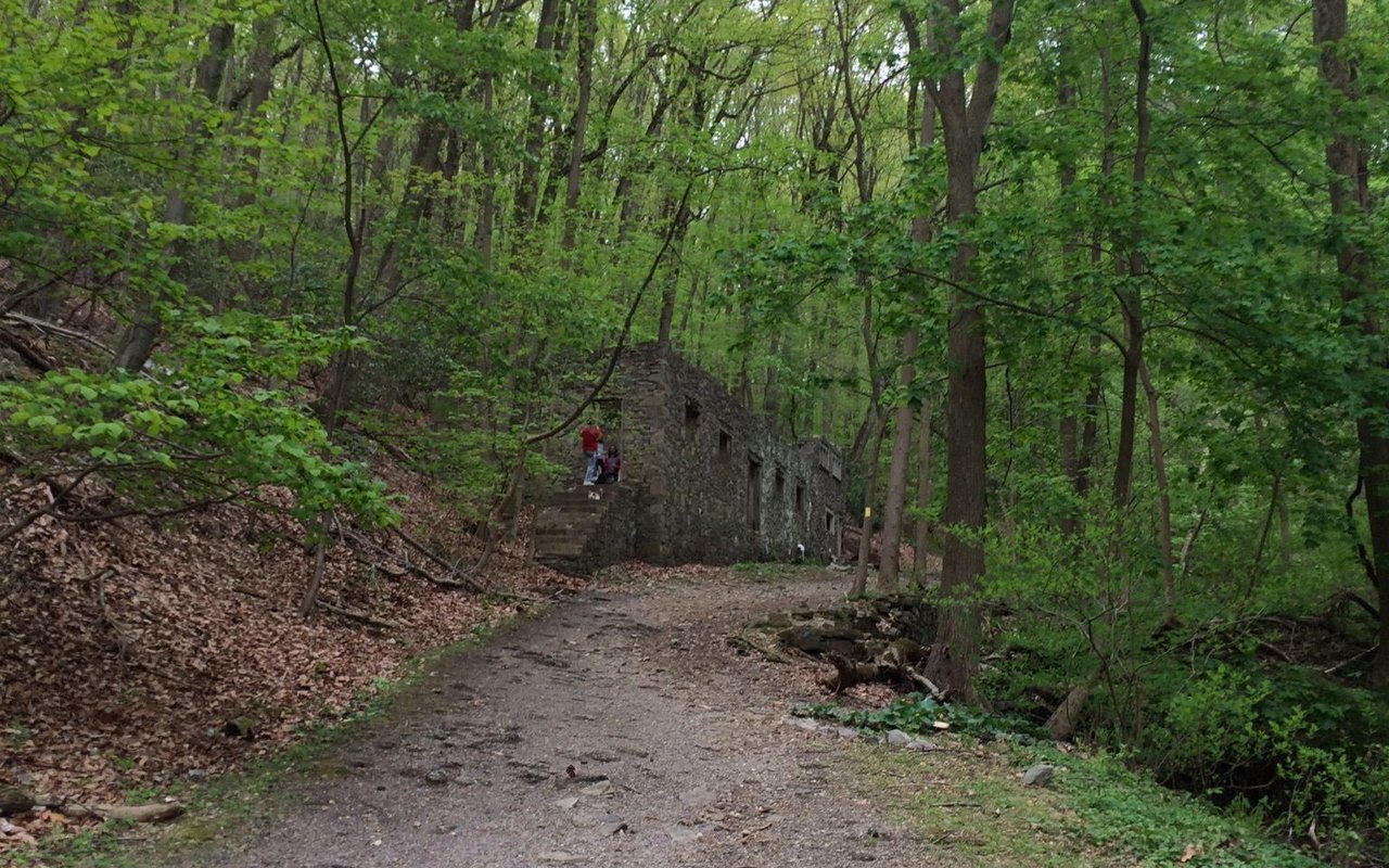 AWAYN IMAGE Valley Forge Historical Trail