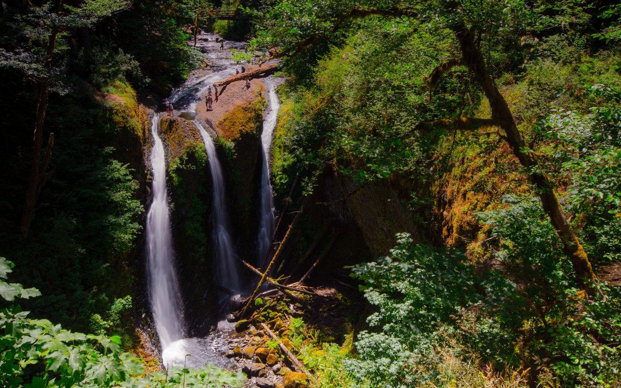 AWAYN IMAGE Oneonta Gorge Trail