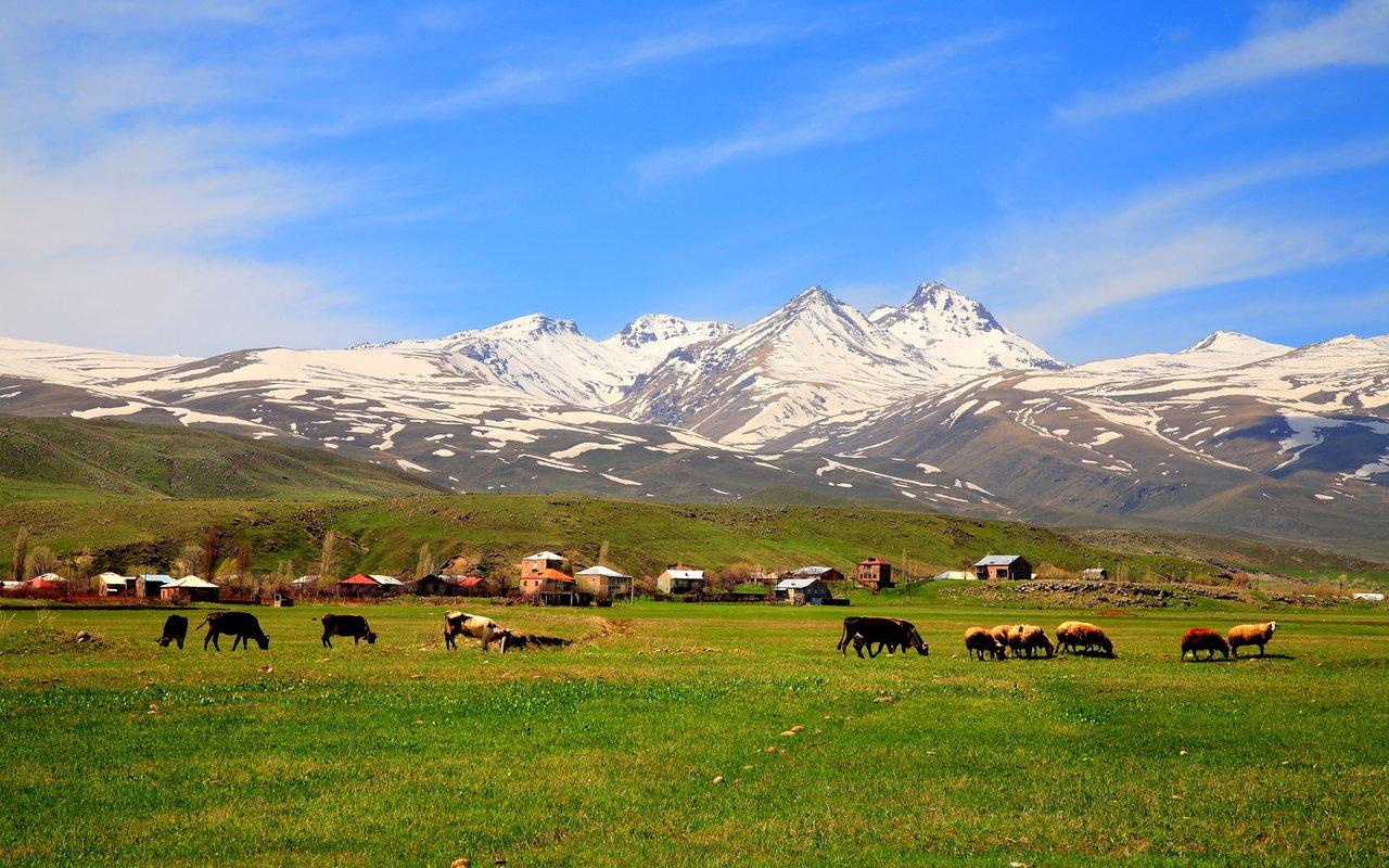 AWAYN IMAGE Mt aragats