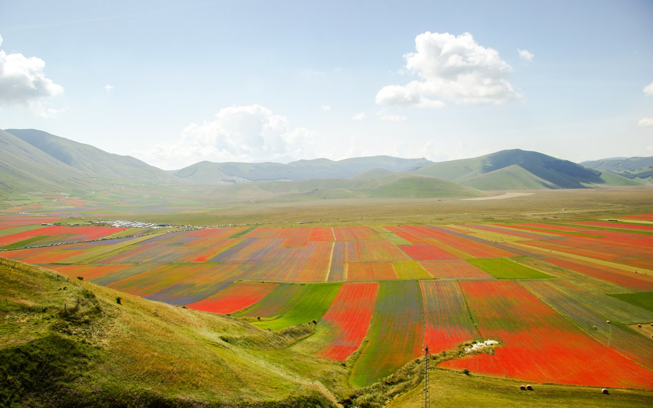 AWAYN IMAGE Colors Bloom of Castelluccio