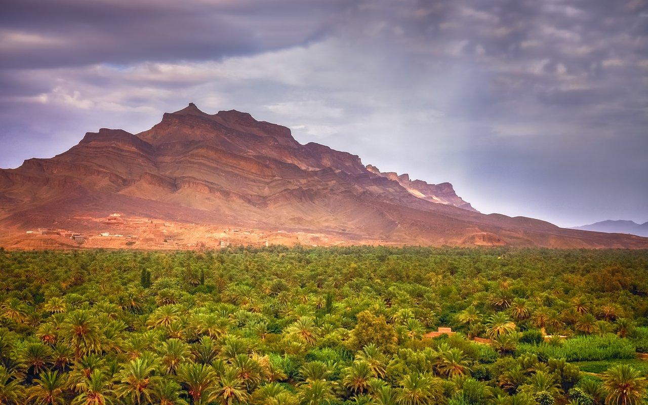 AWAYN IMAGE Oued Draa (Draa Valley)