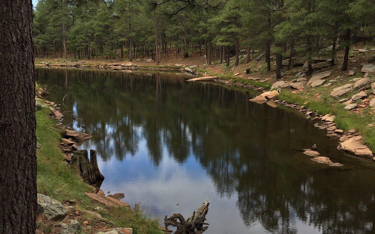 AWAYN IMAGE Woods Canyon Lake Trail