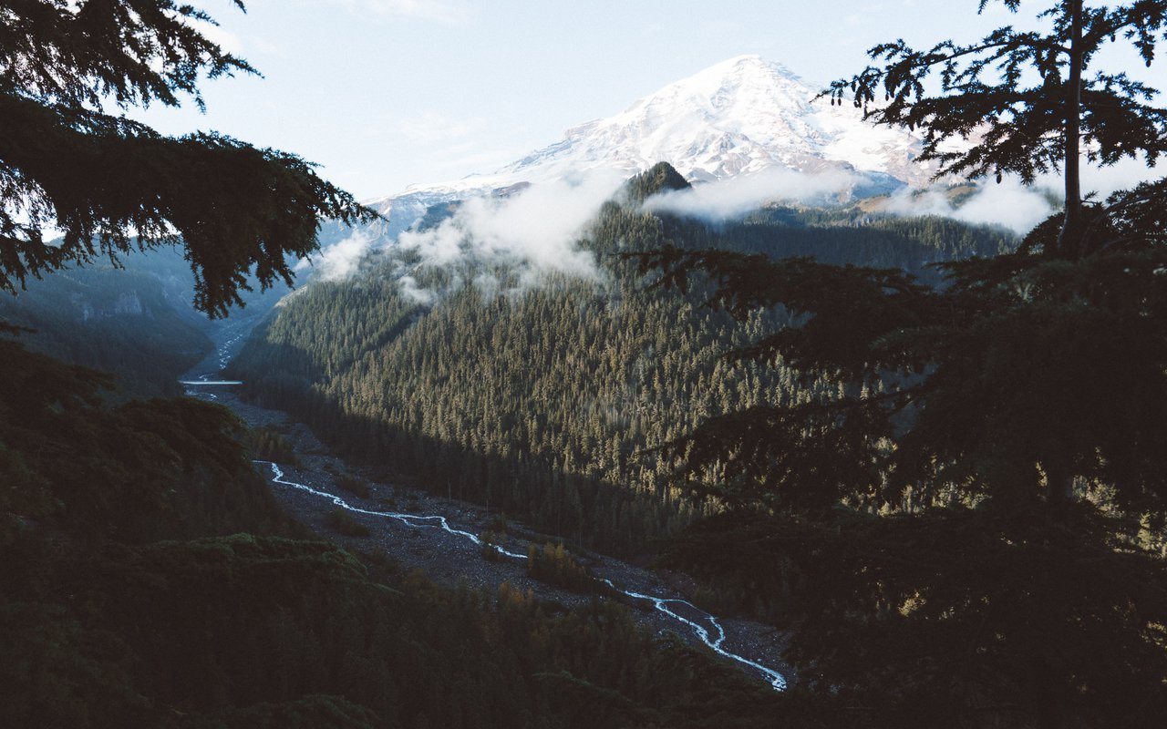 AWAYN IMAGE Hike to Mount rainier national park