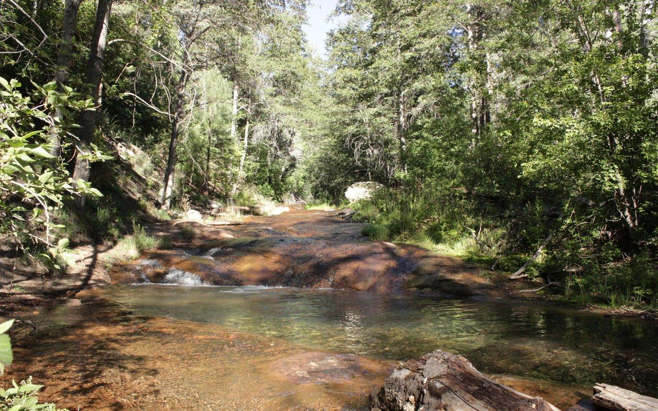AWAYN IMAGE Horton Creek Trail