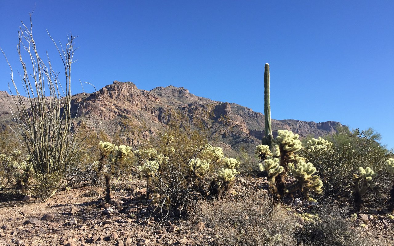AWAYN IMAGE Hiking Trip in Superstition Wilderness area