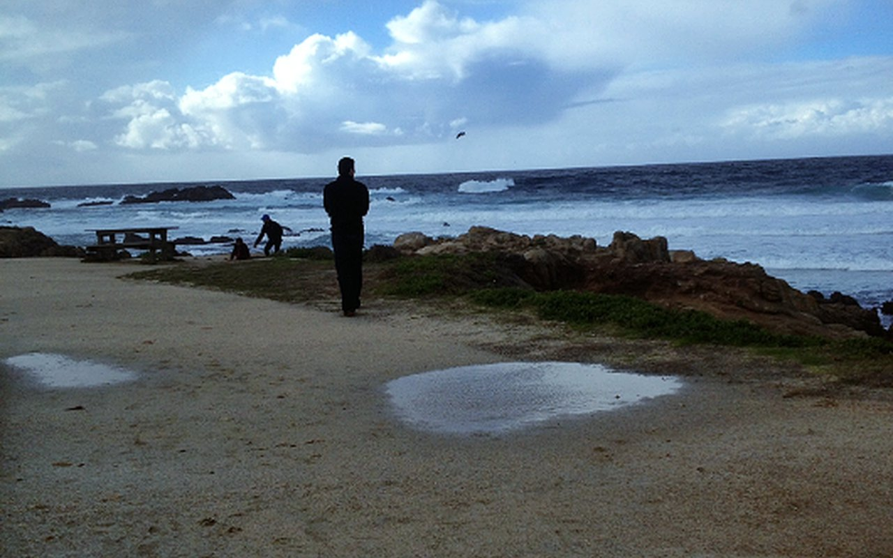 AWAYN IMAGE Lighthouse Field State Beach Hiking & Surfing