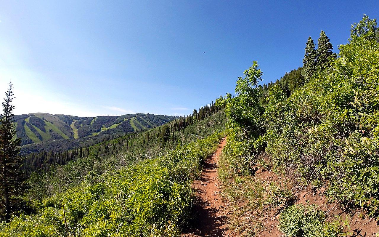 AWAYN IMAGE Midmountain Trail, Utah.