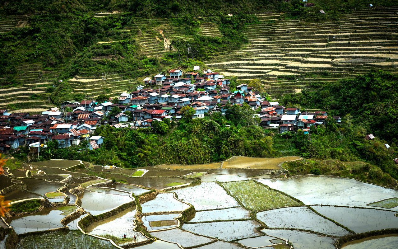 AWAYN IMAGE Ifugao's Terraces