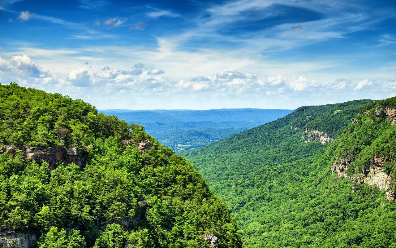 AWAYN IMAGE Cloudland Canyon State Park