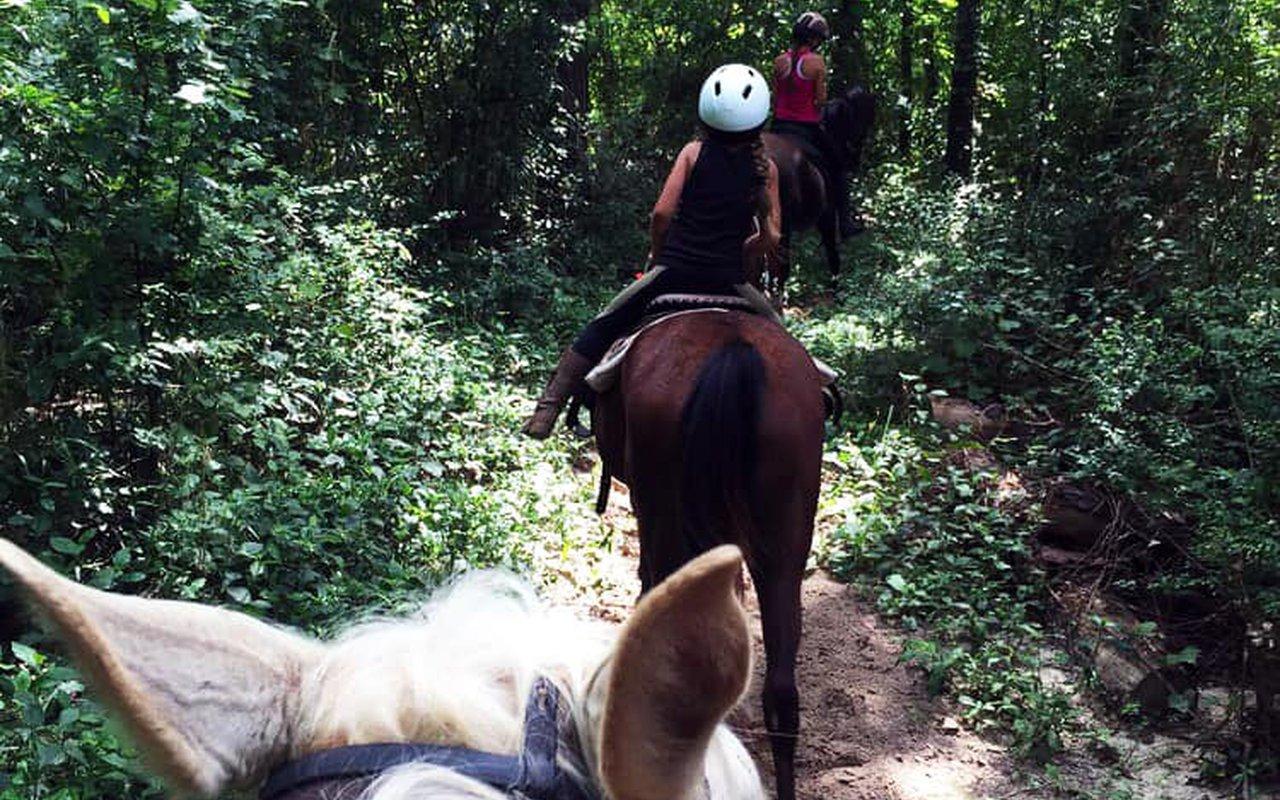 AWAYN IMAGE Cypress Trails