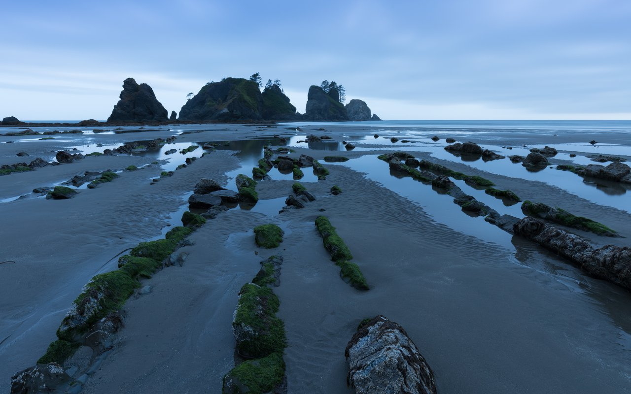 AWAYN IMAGE Shi Shi Beach