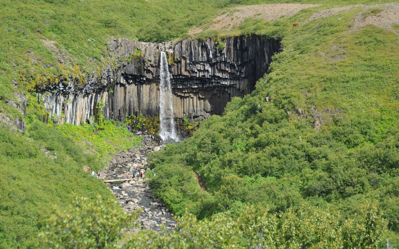 AWAYN IMAGE Walk to Svartifoss Waterfall