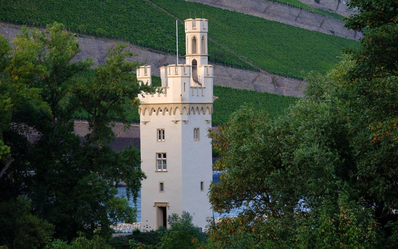 AWAYN IMAGE MäuseturmBinger Maeuseturm, Mouse Tower on Mouse Island