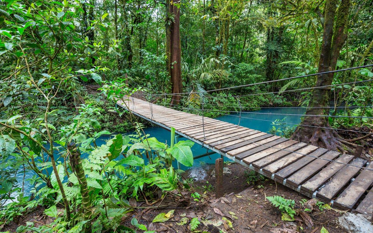 AWAYN IMAGE Monteverde Hanging Bridge