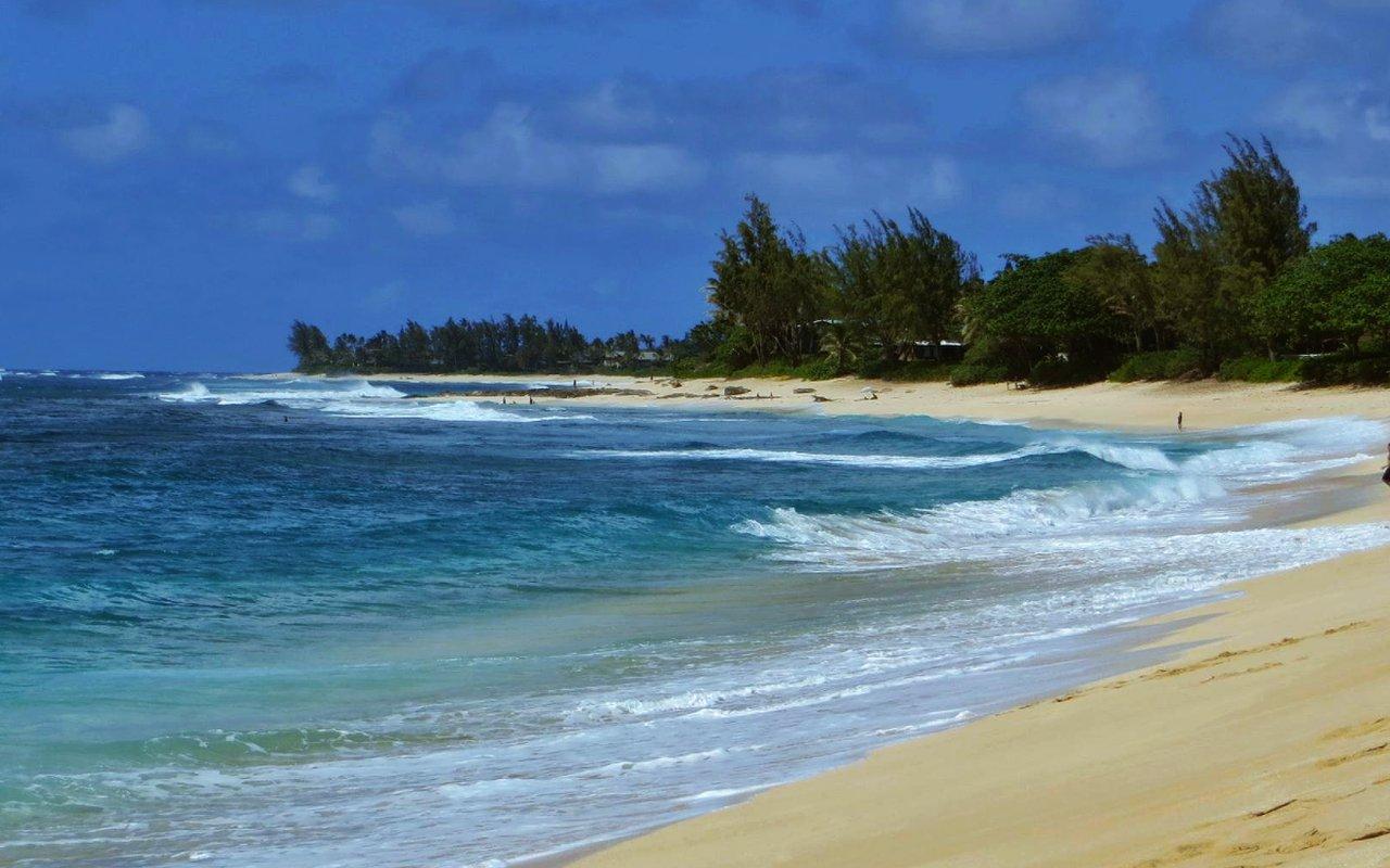 AWAYN IMAGE Surfing Ehukai Beach Park