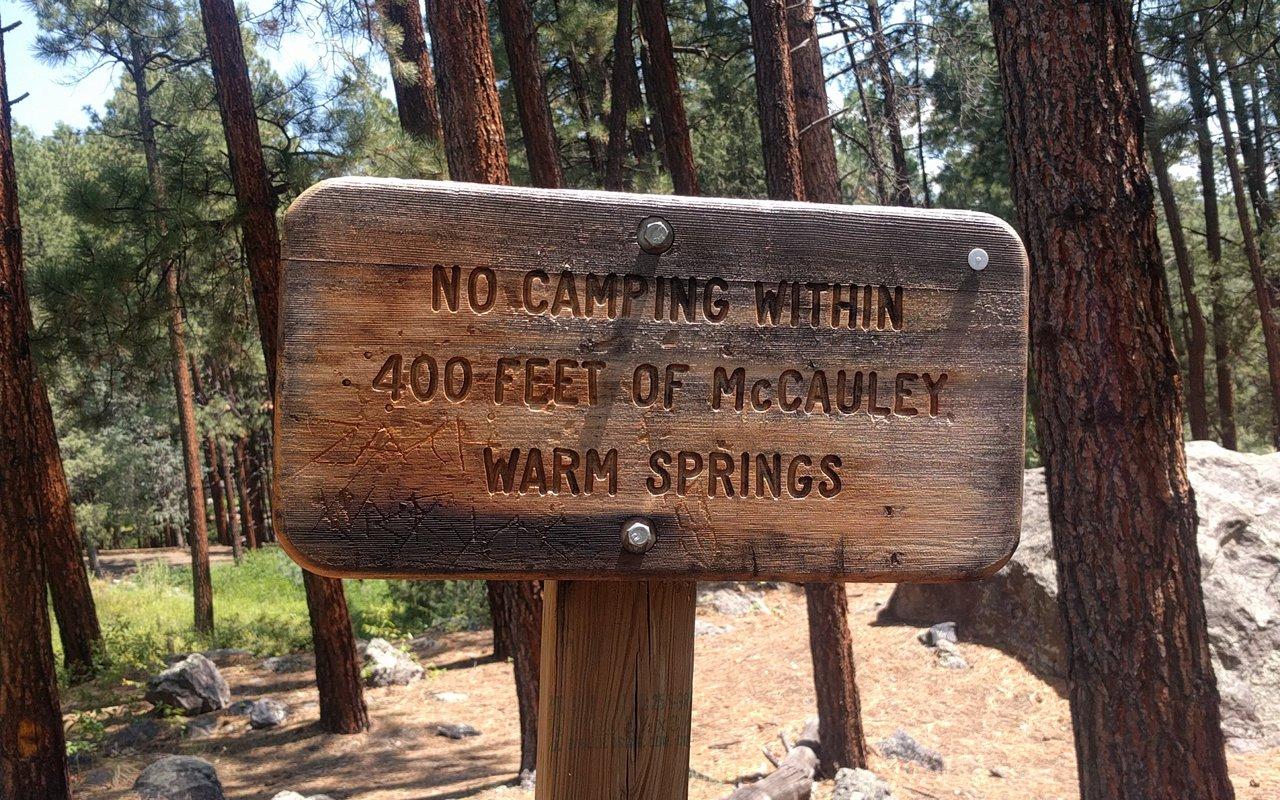 AWAYN IMAGE McCauley Spring